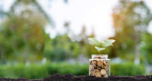 ESG investing: roots to return