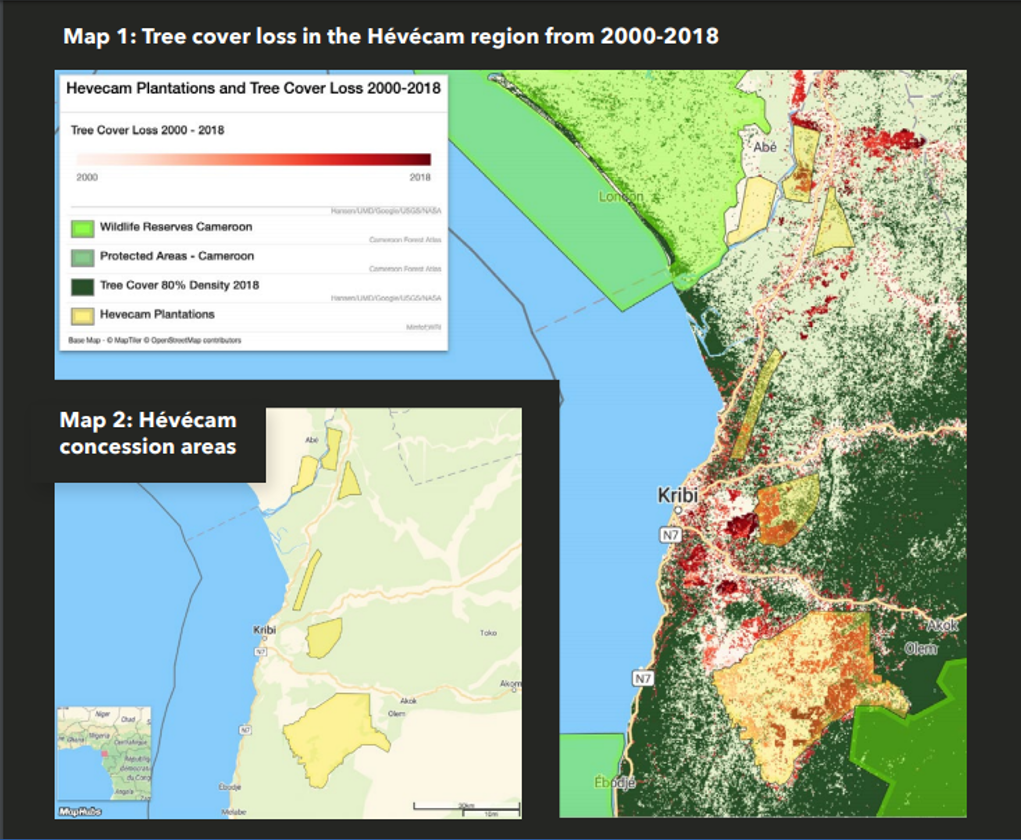 tree-cover-loss-int-the-hevecam-region-from-2000-2018